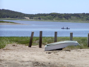 Welfleet, MA- a place with a healthy aquaculture and wild harvest fishery.
